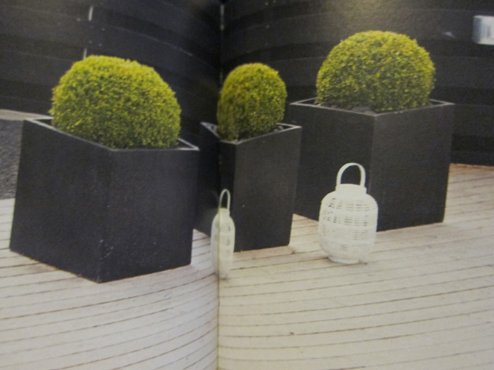 Projekt villa Els: Funderingar runt trädgården.