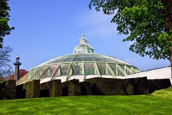 "<img src=""royal-greenhouses4.jpg"" alt=""royal green house"">"