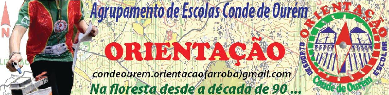 Orientação na Escola Básica do 2º e 3º Ciclos D. Afonso, 4º Conde de Ourém