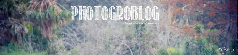 Photogroblog