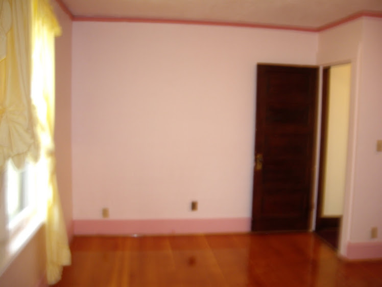 blurry pic of a pepto pink bedroom