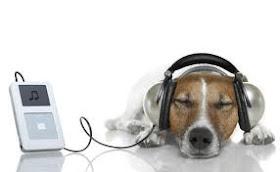 OUÇA RADIOS