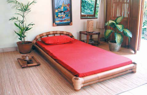 Bedroom Design : Bamboo Bed Design Ideas