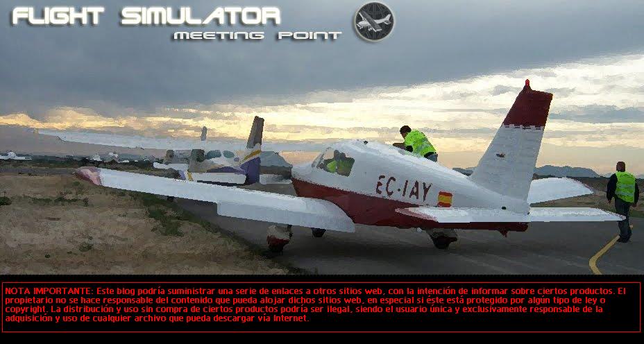 Flight Simulator Meeting Point