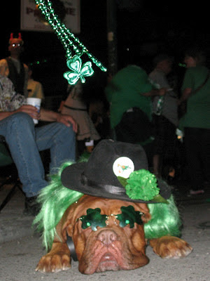 Shamrock sunglasses dog:  Downtown Irish Club Parade, St Patrick's Day 2012, NOLA