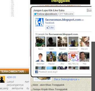 Cara Membuat Like Facebook Tersembunyi Di Blog