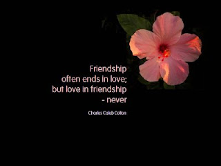 friendship ofter ends in Love Quote and Saying
