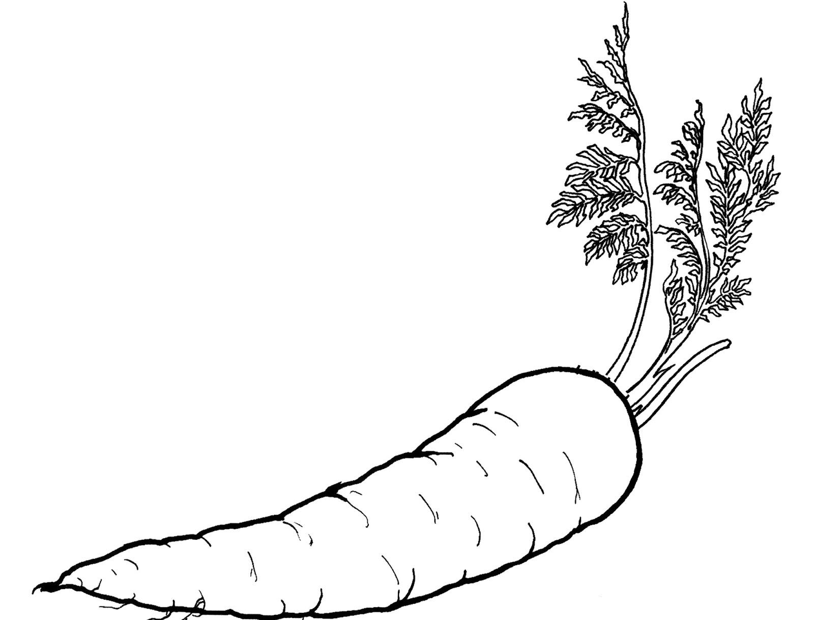 Mewarnai Sayuran