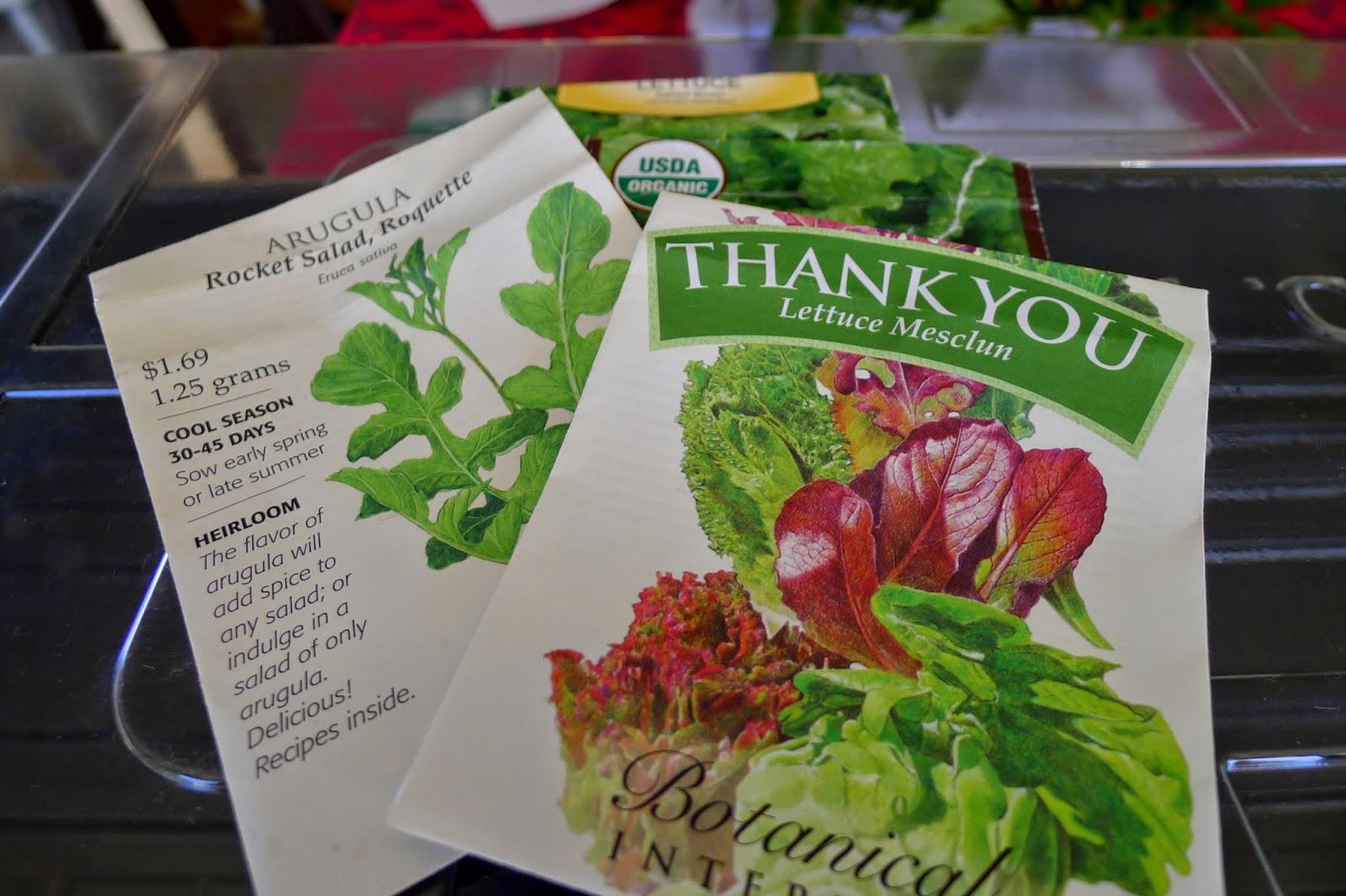 Growing lettuce indoors over winter