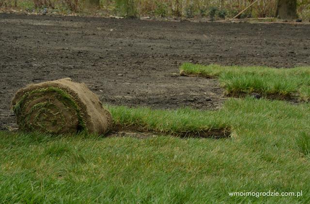 robienie trawnika