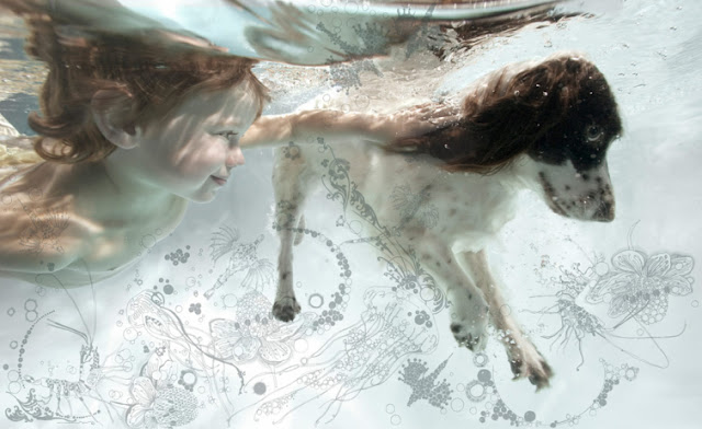 underwater photography with dogs