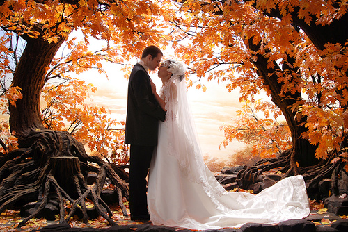 elegant-fall-weddings