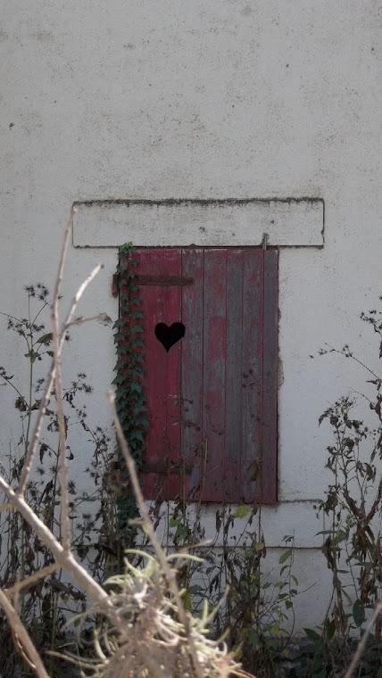 El corazón solito