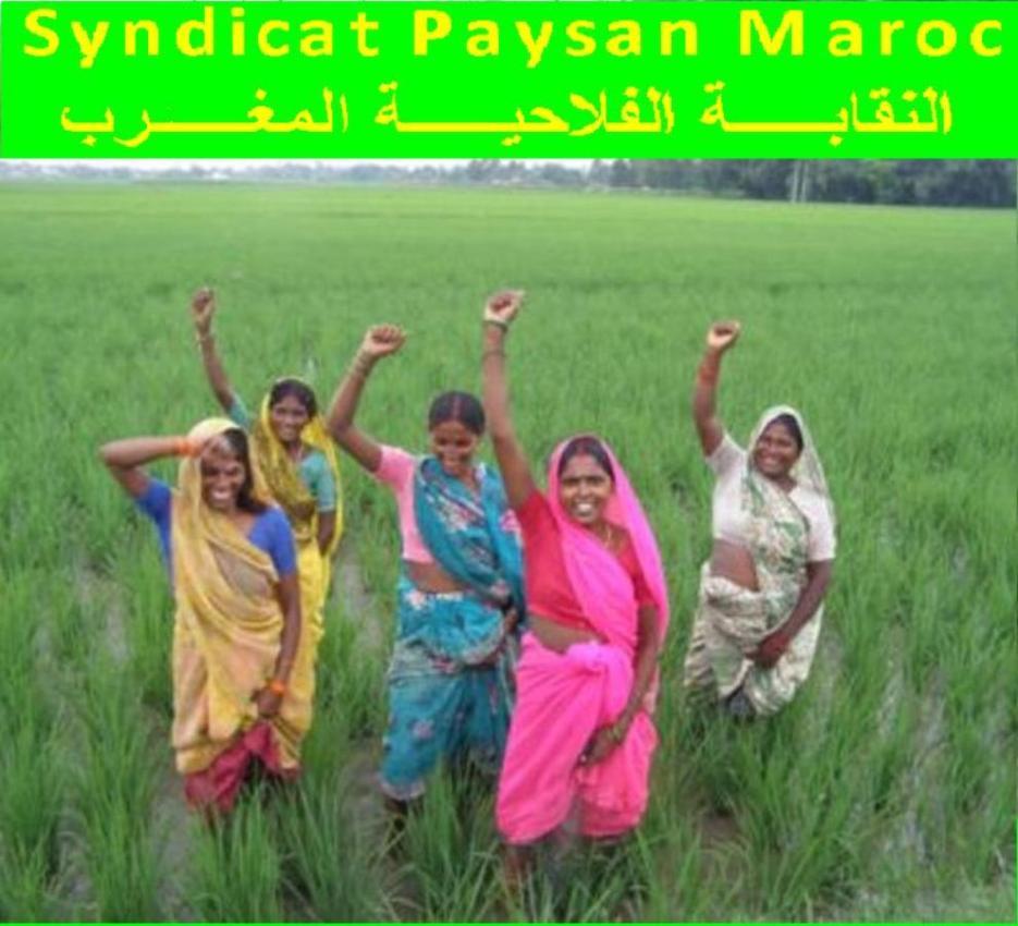 SYNDICAT PAYSAN - MAROC النقابة الفلاحية ـ المغرب