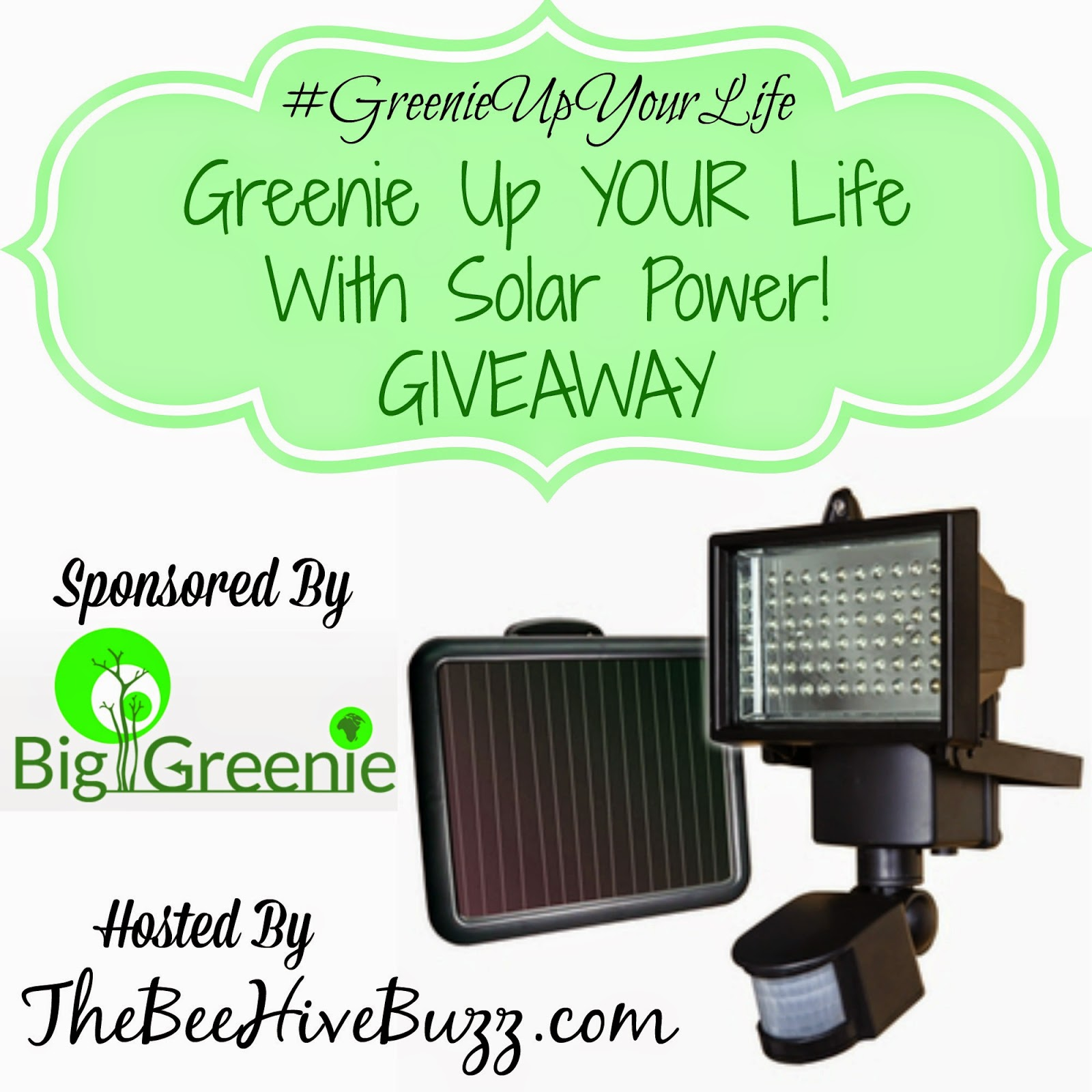 http://www.thebeehivebuzz.com/2014/12/big-greenie-sunforce-led-solar-motion-light-giveaway-greenieupyourlife.html