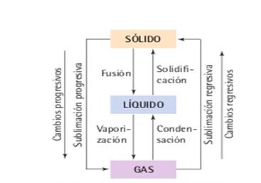 Reacci N De Co2 S Lido Con Agua Y Detergente