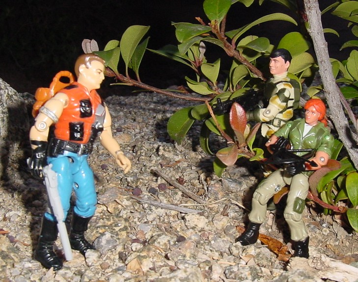1987 Mercer, Sgt. Slaughters Renegades, 2004 Anti Venom Barricade, Scarlett, Daina