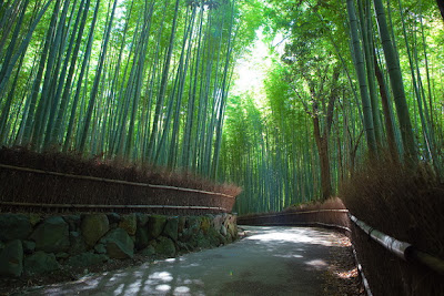 Jalan Setapak Bambu, Jepang