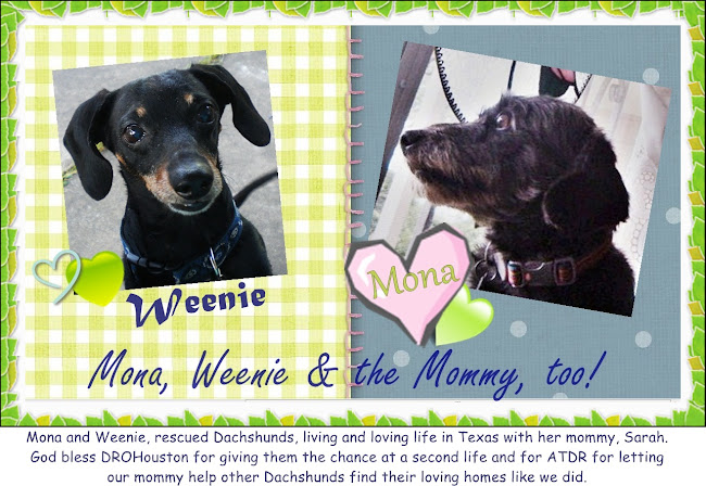 MONA, WEENIE AND THE MOMMY TOO!!