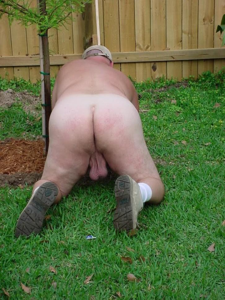 gardening-gayopas.jpg