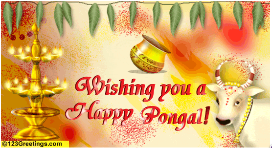 Mortelas mattu pongal greetings pongal tamil greetings pongal mattu pongal greetings pongal tamil greetings pongal greetings in tamil pongal in tamil nadu pongal holidays pongal festivals thai pongal greeting m4hsunfo