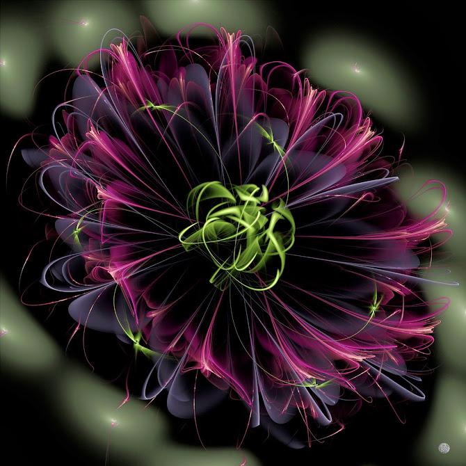 Atom flowers, jwf