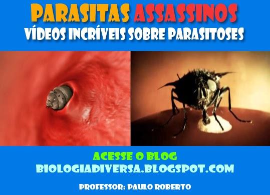 Em diagnóstica de Moscou de parasitas
