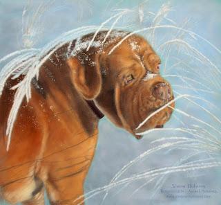 Tierportrait Hundeportrait, Hund mit Pastellkreide malen oder zeichnen lassen