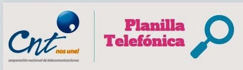 consultar planilla CNT