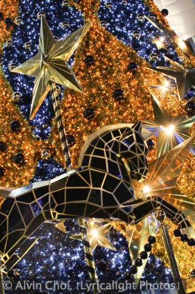 Alvin Choi (Lyricalight Photos) Christmas
