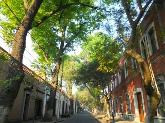 Última visita literaria del año por la calle Francisco Sosa en Coyoacán