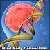 Benarkah Otak Hardware dari Pikiran