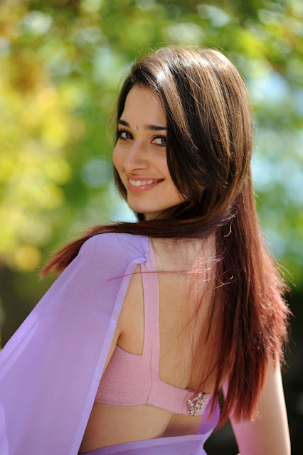Tamanna Beautiful Pictures in Saree