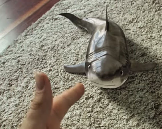 Shark plays dead on Youtube video