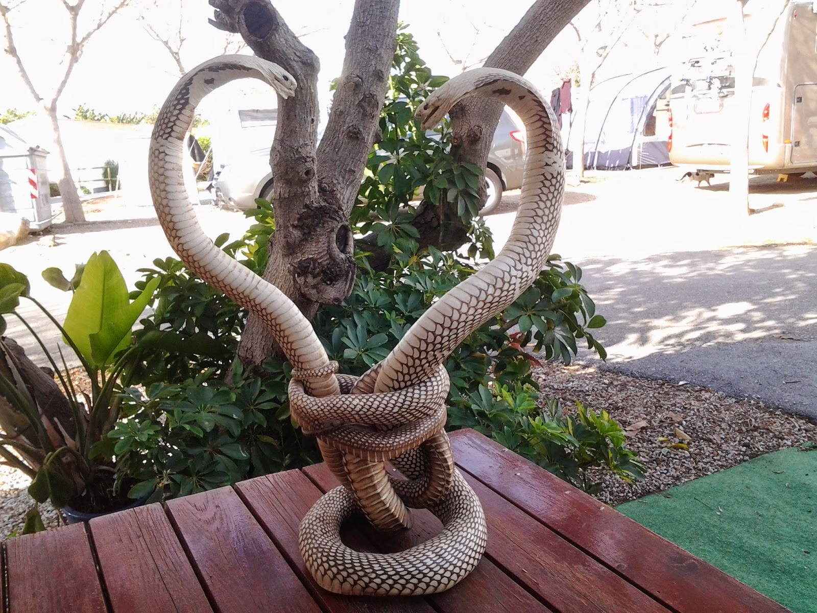 Digame: For Sale Stuffed Cobras.....