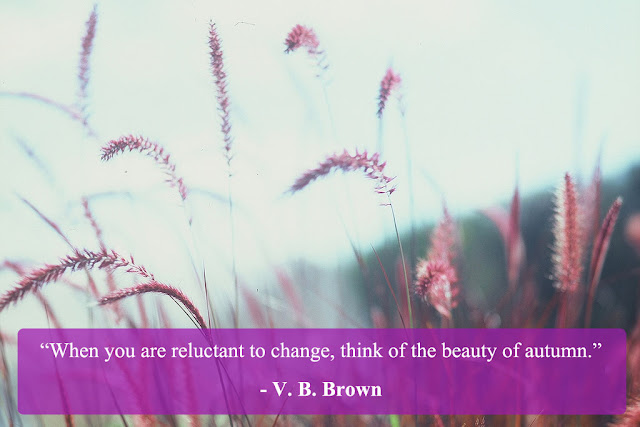 change quote by VB Brown