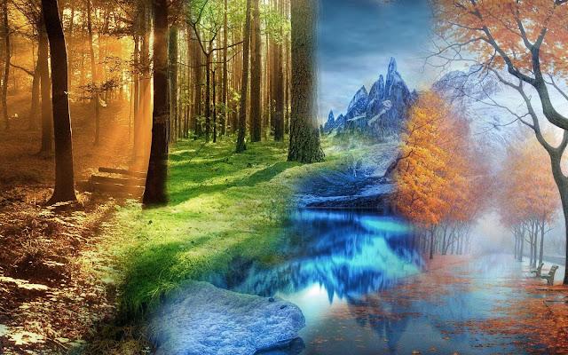 Leuke wallpaper met de seizoenen lente, zomer ,herfst en winter
