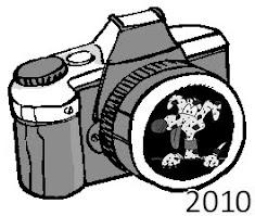 fotogallery 2010