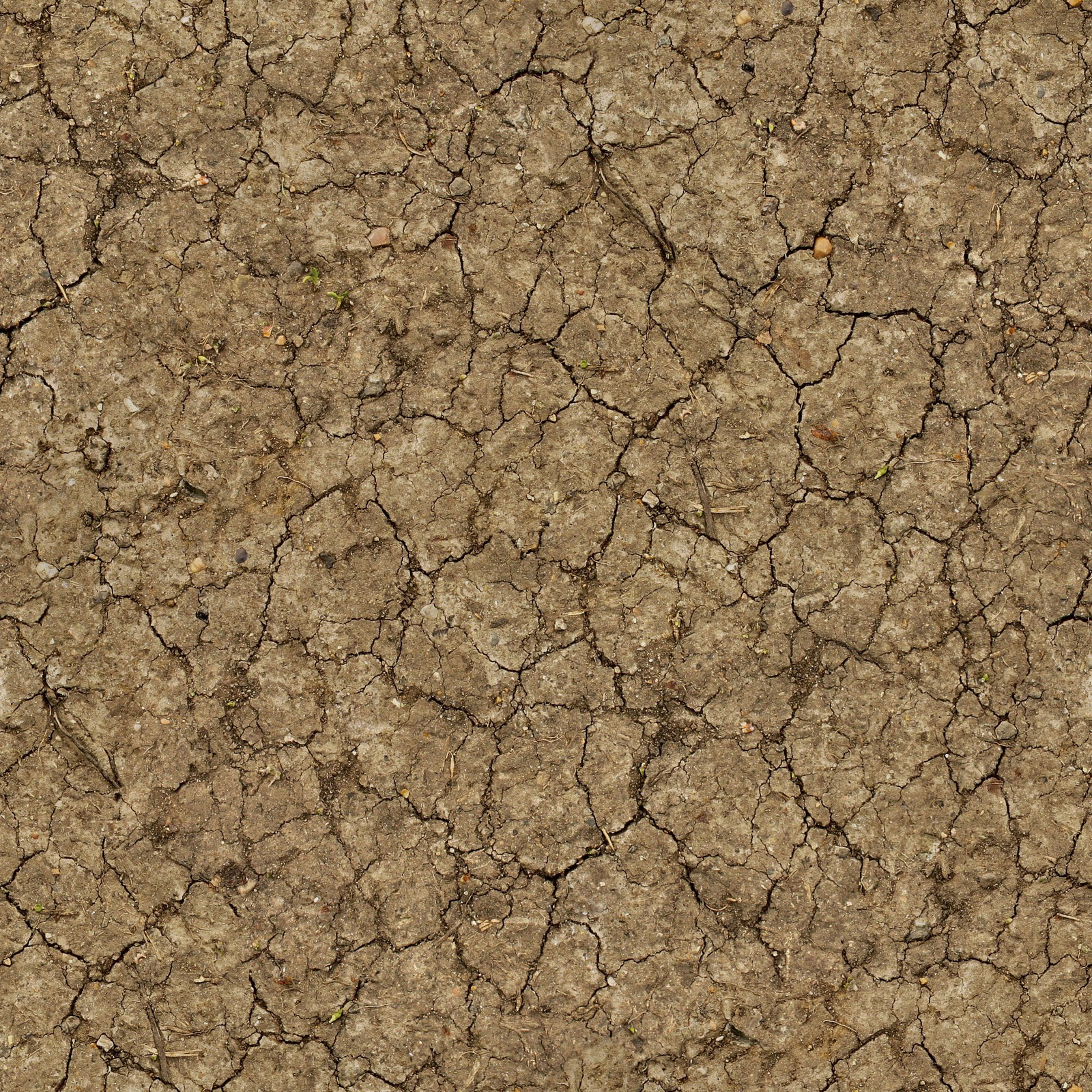 High Resolution Seamless Textures Free Ground