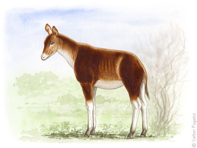 girafas en Europa Umbrotherium