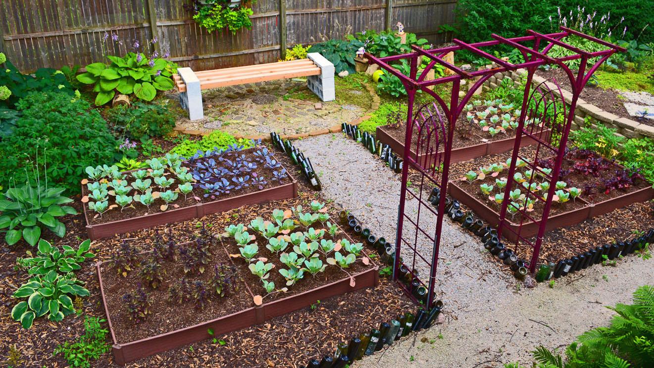 Como iniciar un peque o cultivo huerto o huerta en casa - Pequeno huerto en casa ...