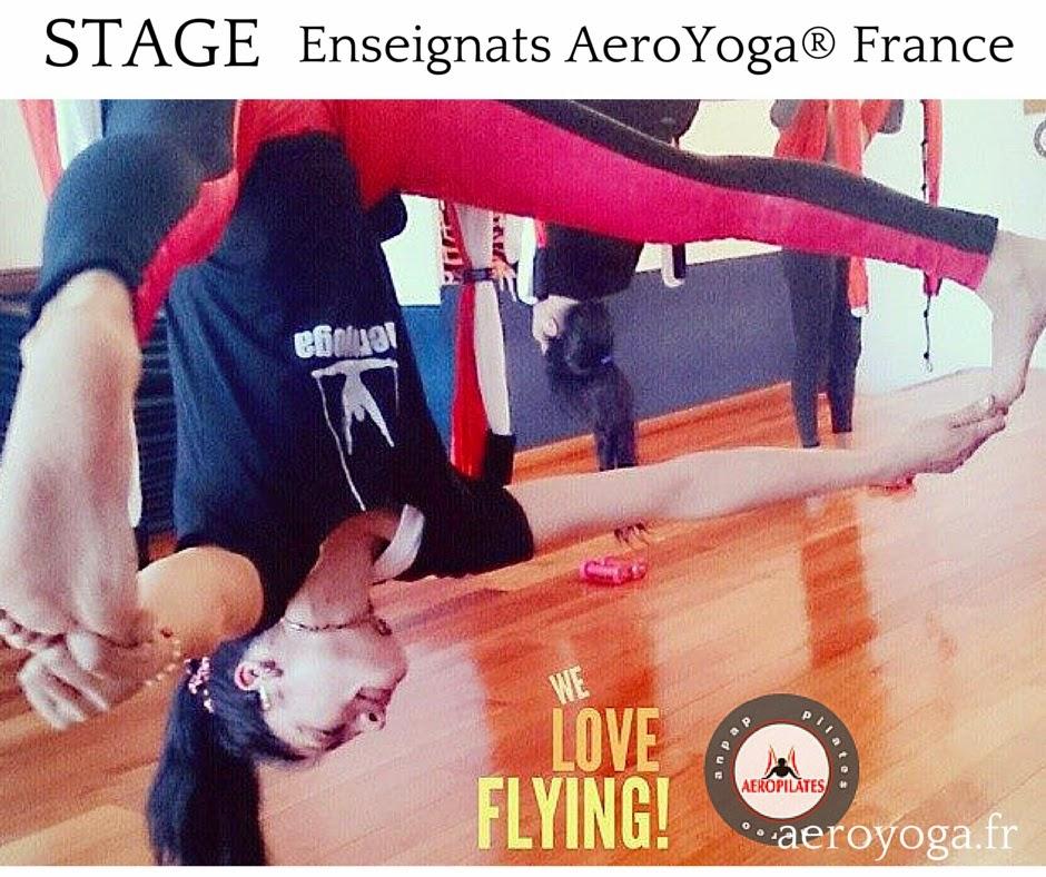 Pilates Aerien  by AeroPilates® International