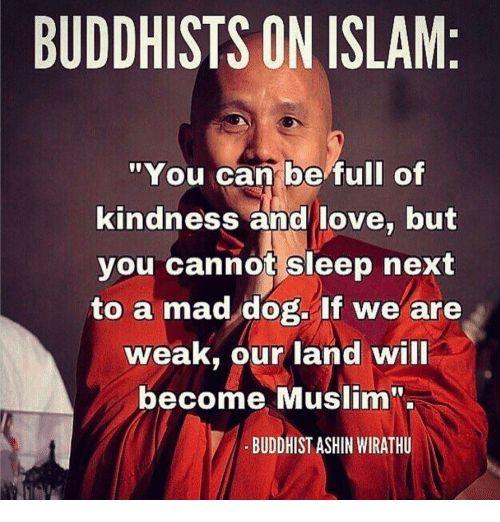 Seppo Lehto arvostaa buddhalaisten tapaa torjua islamisaatio Burmassa