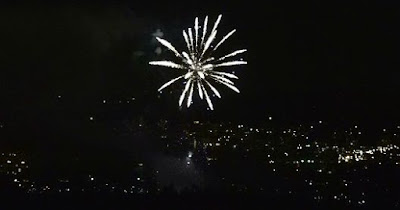 flower shaped fireworks display over city of Vancouver