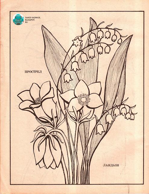 Раскраски для детей распечатать СССР советская версия для печати скан распечатать скачать старая из детства