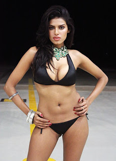 Kingfisher Models on ramp images