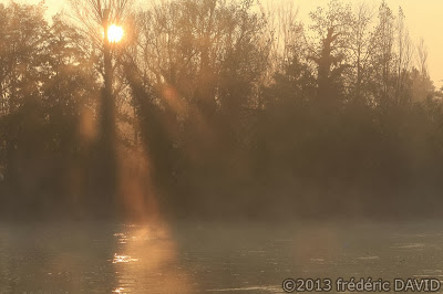 silhouettes maritime rivière brume lever soleil Seine-et-Marne