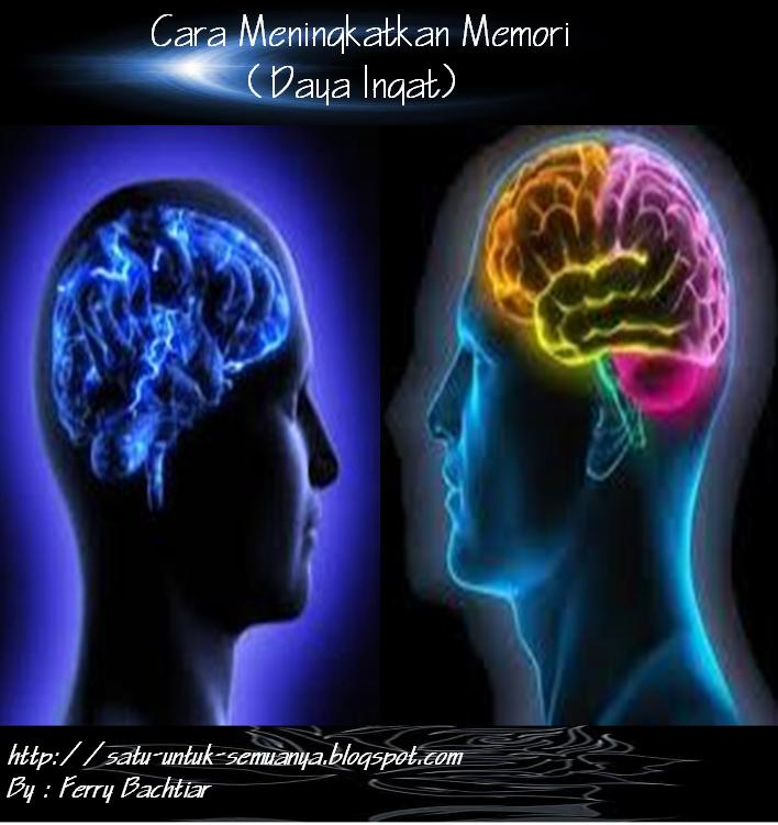 cara meningkatkan memori atau daya ingat manusia