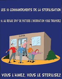 les 10 commandements de la stérilisation