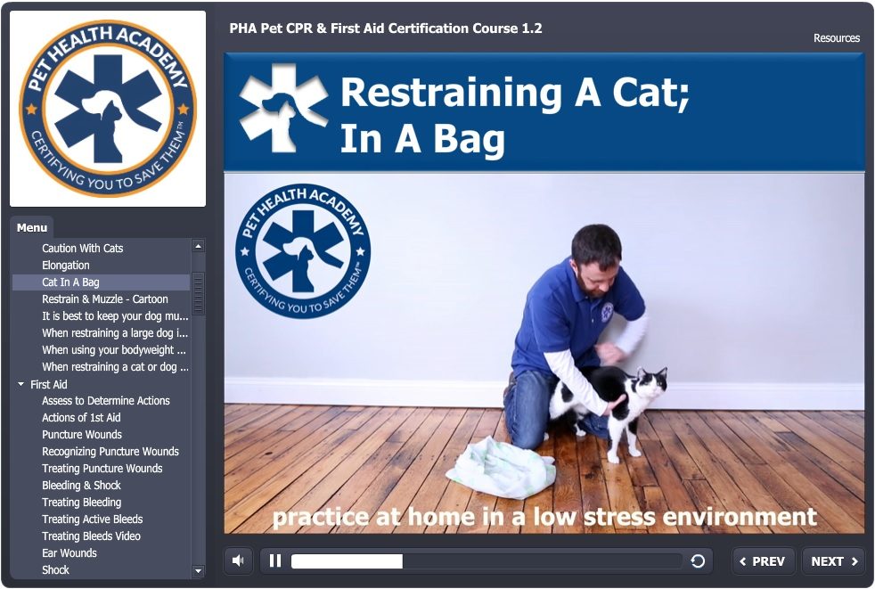 Online Pet Cpr Course